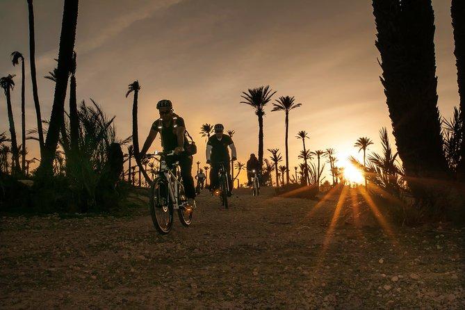 Il tour in bici fuoristrada Palmery da Marrakech
