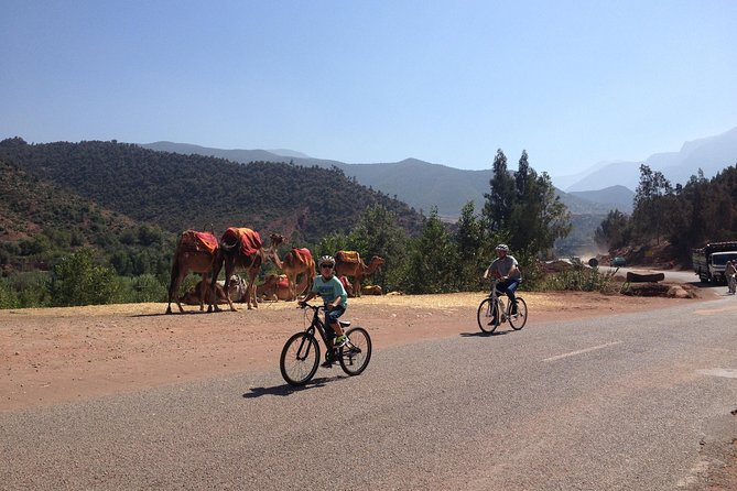 Beginners On-Road Bike Tour of the Atlas Mountains from Marrakech