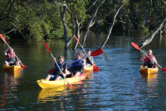 Jervis Bay Kayak y SUP Guided Tours