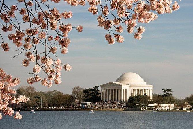 Philadelphia Cherry Blossom Festival 2020.5 Day Washington Dc Cherry Blossom Festival 2020