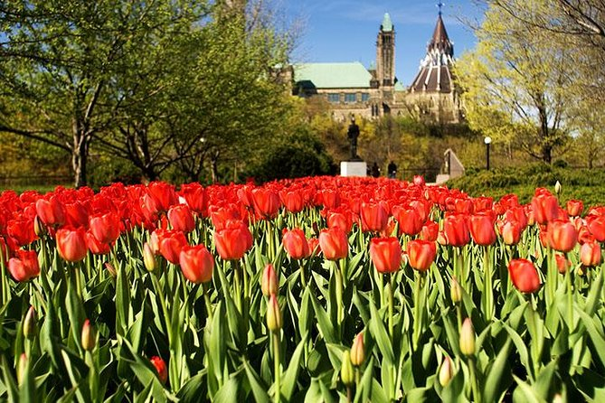 4-Day Canada Tulip Festival Journey from New Hampshire