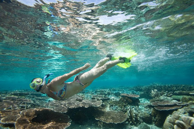 Snorkeling Package at Padang Bai Blue Lagoon