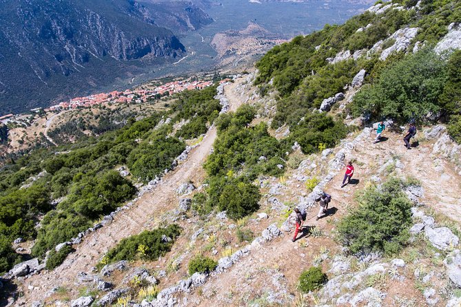 Hiking Tour on the Ancient Delphi Footpath