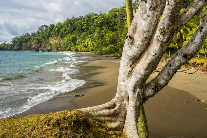 8-Day Costa Rica Natural Wonders Guided Adventure Hike