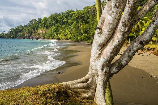 Randonnée guidée de8jours pour découvrir les merveilles naturelles du Costa Rica