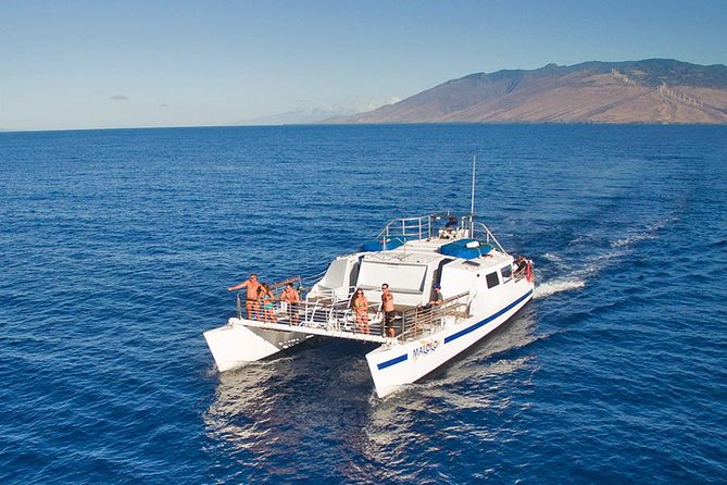 Maui Morning Snorkeling Tour to Molokini Crater & Turtle Town! (Ma'alaea Harbor)