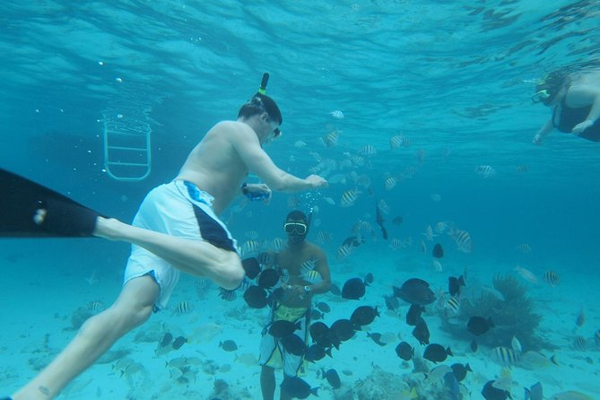 Stingray City Experience Plus Two Snorkeling Stops
