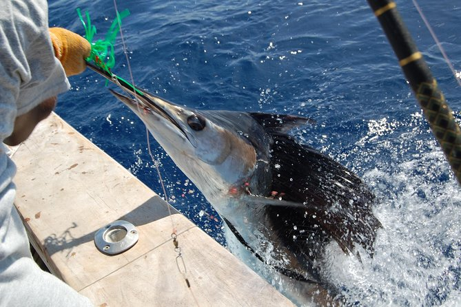 Small-Group Saint Lucia Sports Fishing Tour