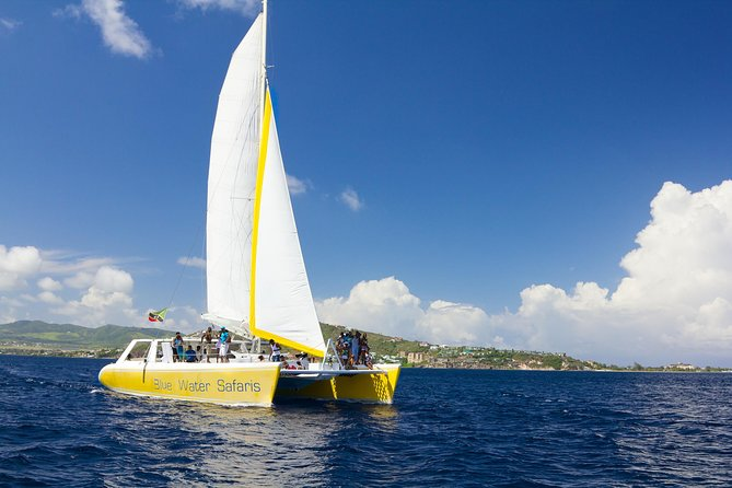 St Kitts Full Day Catamaran to Nevis