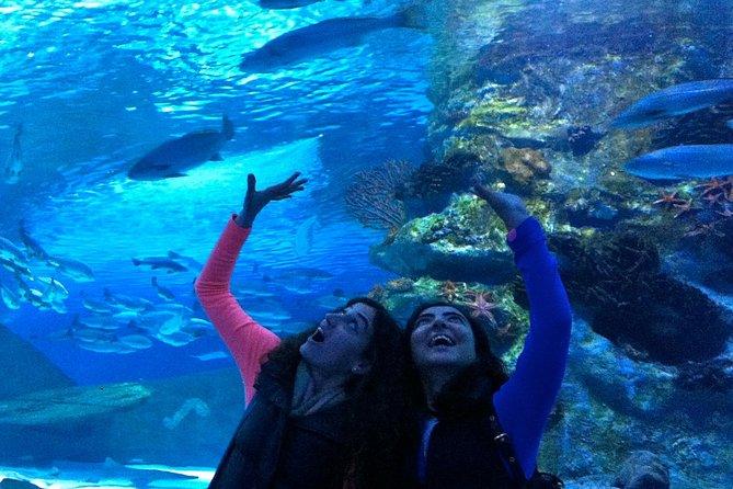 Aquarium & Face2Face Wax Museum from Antalya