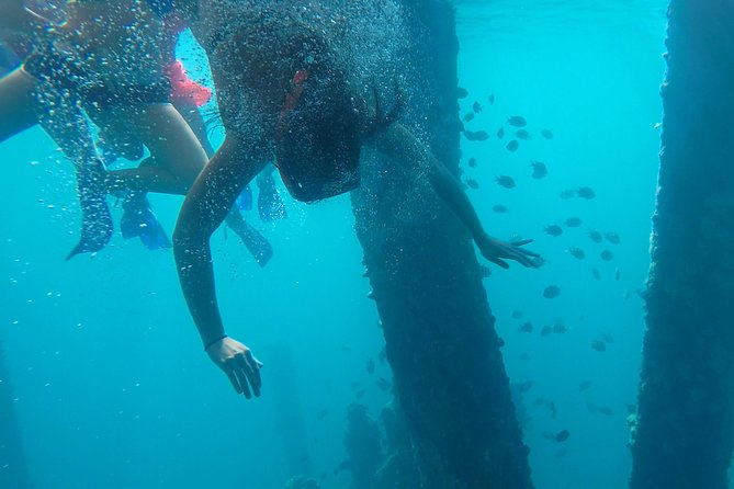 Snorkling in Vieques