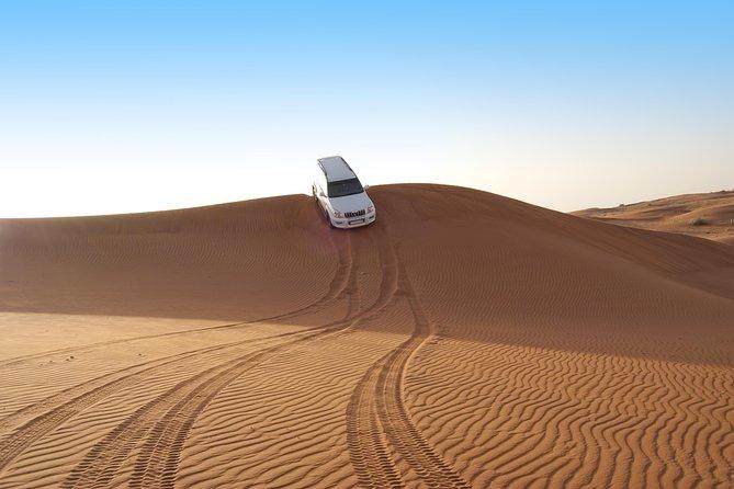 Safari por el desierto de Abu Dhabi de 6 horas con cena BBQ