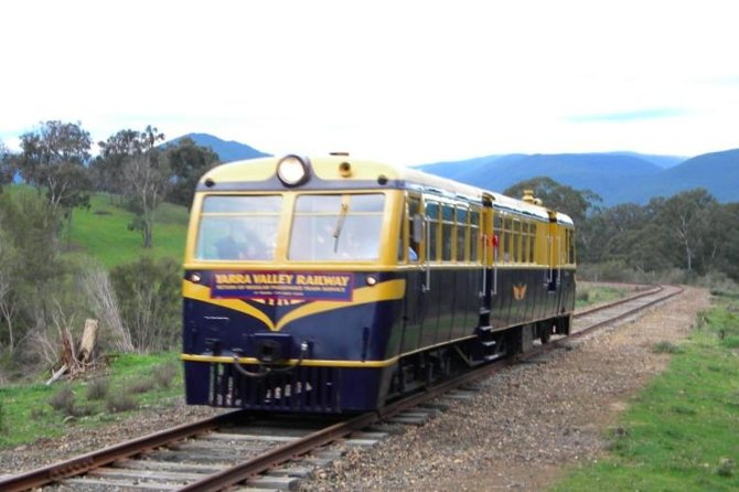 Steam Train, Yarra Valley & Healesville Wildlife Sanctuary Full Day Tour