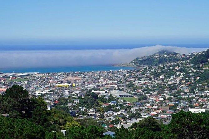 Hobart Shore Excursion: Small Group Mount Wellington 3-Hour Bike Tour