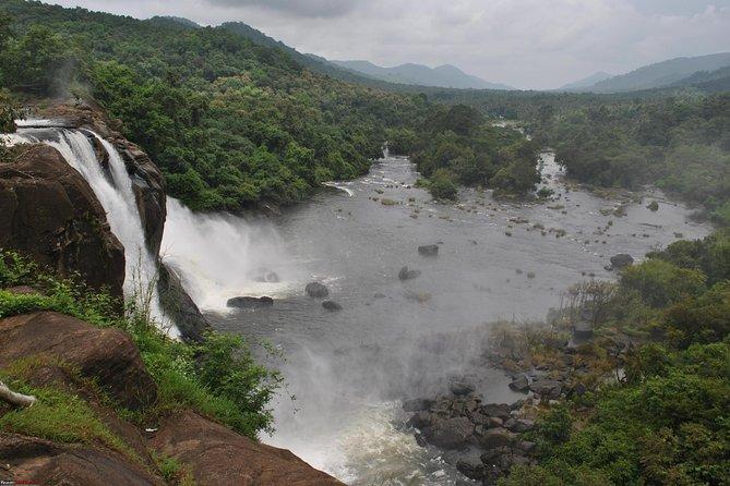 Excursion privée d'une journée à Athirappilly et aux chutes de Vazhachal avec déjeuner au départ de Kochi