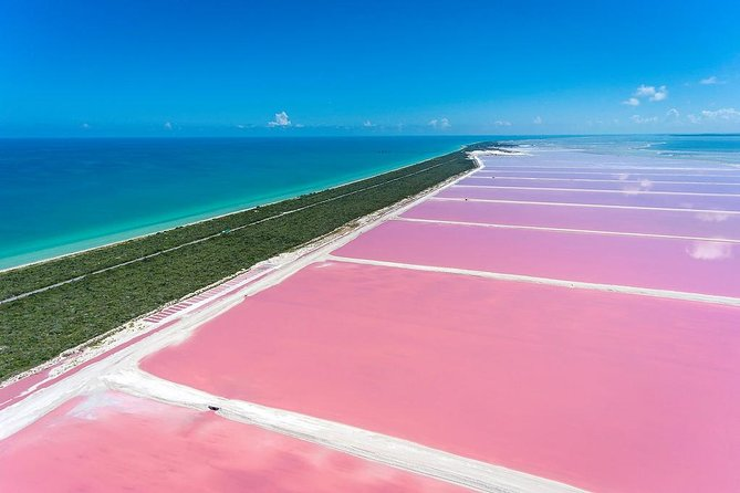 Pink Waters of Las Coloradas, Pink Flamingos and Colonial City of Valladolid,