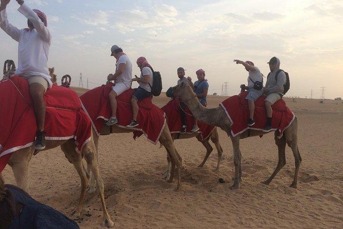 Dubai Evening Camel Safari Adventure med grillmiddag