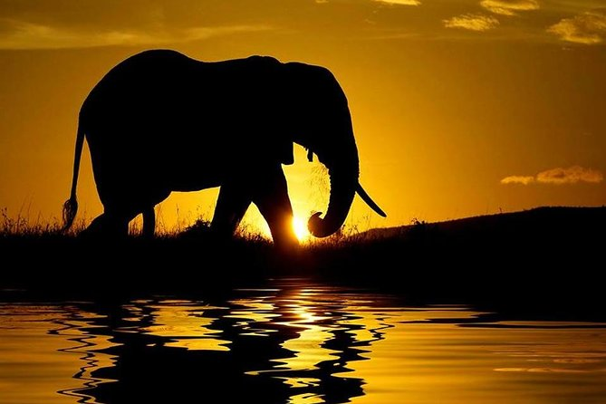 Kenya- Under Canvas