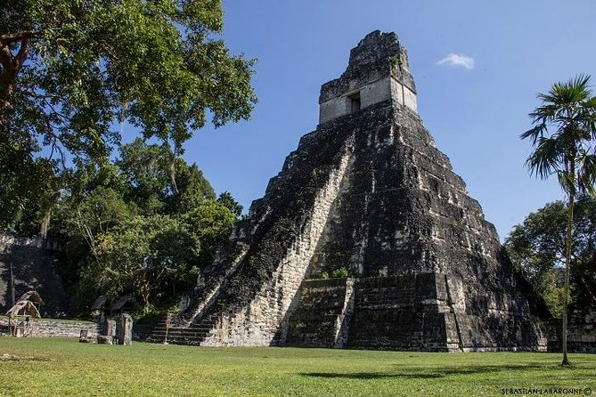 Day Trip to Tikal Maya Ruins Including Lunch
