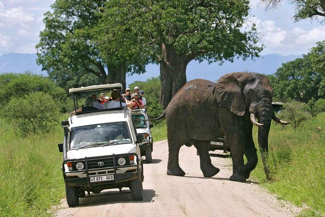 16 Days Uganda and Tanzania Wildlife Safaris