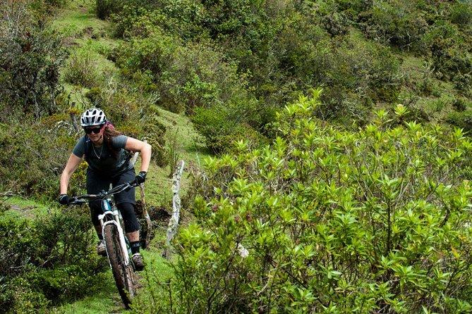 Full Day Bike Rental in Mindo