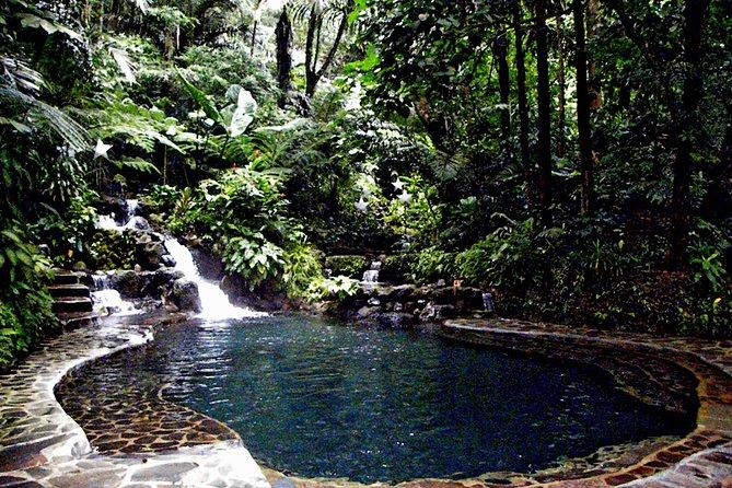 Excursión de un día a Hidden Valley desde Manila