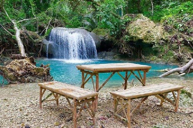 Excursión de un día a Kawasan Falls desde Cebu
