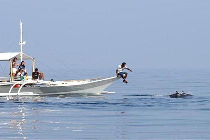 Tour de avistamiento de ballenas y delfines Pamilacan de día completo