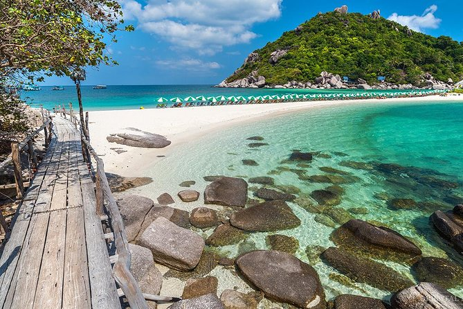 Koh Nangyuan Snorkeling and Koh Tao Tour by Catamaran Cruise from Koh Samui