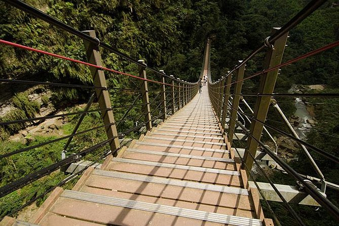 Nantou Walking On Sky Ladder Day Tour from Taichung