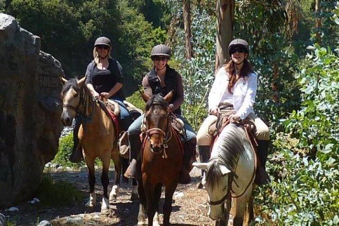 Horseback Riding Plus Tour to Sacsayhuaman, Quenqo, Puka Pucara and Tambomachay