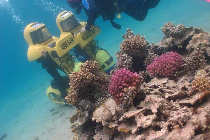plongee-mer-rouge-plongee-aqua-star-coral-beach-eilat