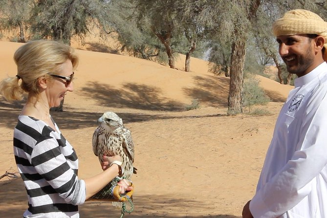 Small-Group Tour: Falcon 2—Dubai Falconry Safari