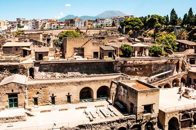 Herculaneum Ruins Privat halvdagstur