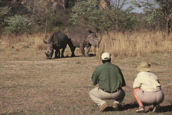 Magic del Sud Africa di 14 giorni ha ospitato un safari per piccoli gruppi da Pretoria
