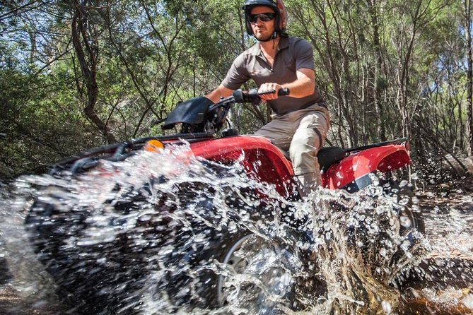 Half-Day Guided ATV Exploration Tour from Coles Bay photo 3