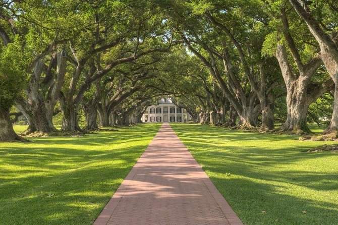 Oak Alley Plantation Tour With Private Transportation photo 1