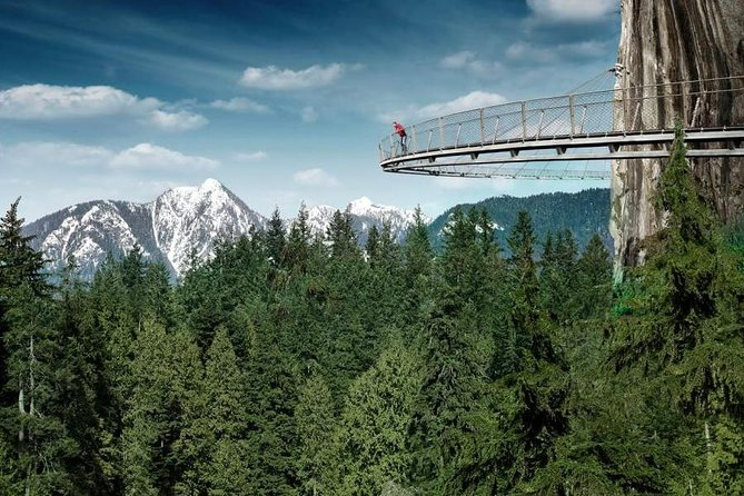 Private Tour: Vancouver Sightseeing and Capilano Suspension Bridge