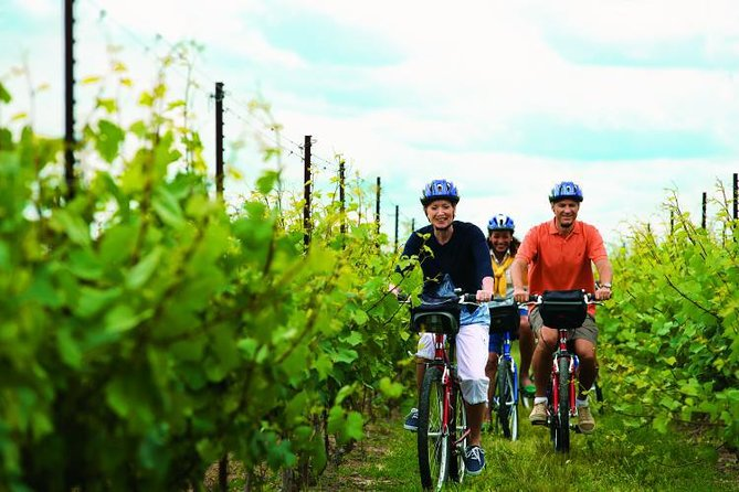 Niagara Winery Bicycle Tour with Cheese photo 1