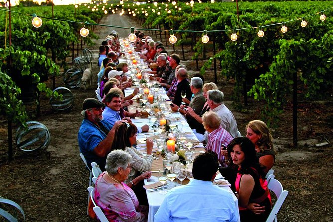 Dinner in the Vineyards from Florence
