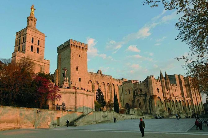 Avignon Private Half-Day Tour from Aix-en-Provence