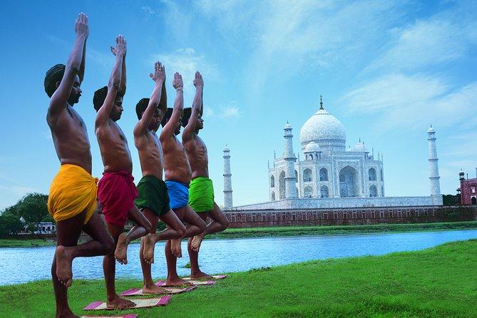 Taj Mahal and Agra Fort Day Trip from Delhi