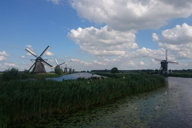 Full day tour with luxury minivan to Kinderdijk & the Hague & Canal Cruise