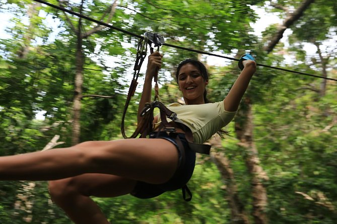 Fly Zone Extreme Adventure at Loterie Farm photo 1