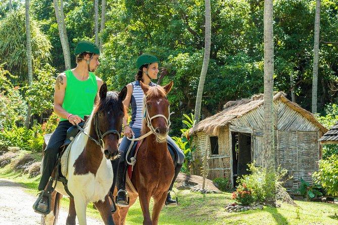 Passeio do cavalo da propriedade do século XVIII