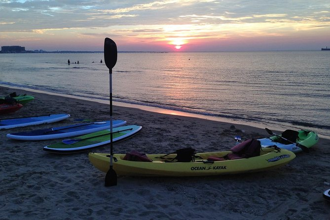 Enjoy a Sunset Dolphin Paddle along the Bay