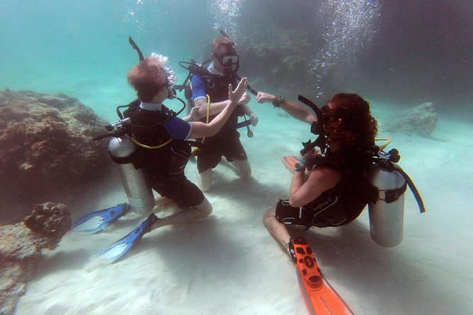 3-Day PADI Open Water Scuba Diving Certification Course in Koh Phi Phi