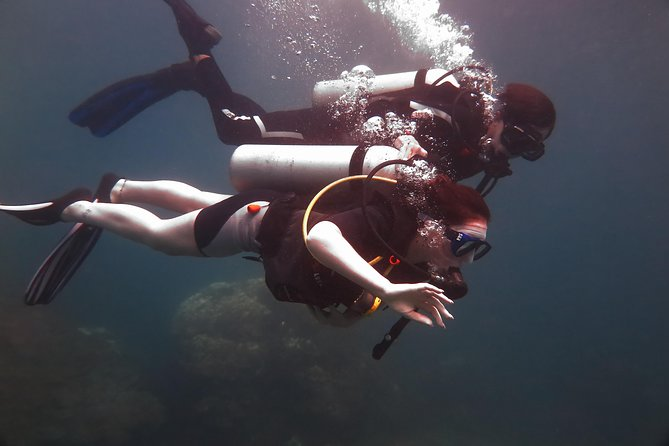Koh Phi Phi Open Water Course