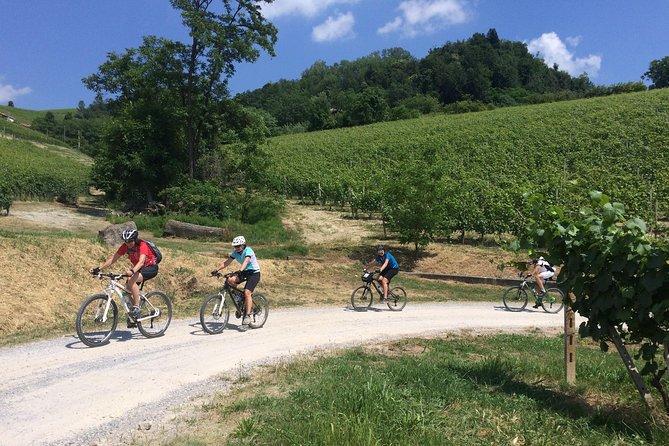 E-bike tour, cata de vinos Barolo y aplicación