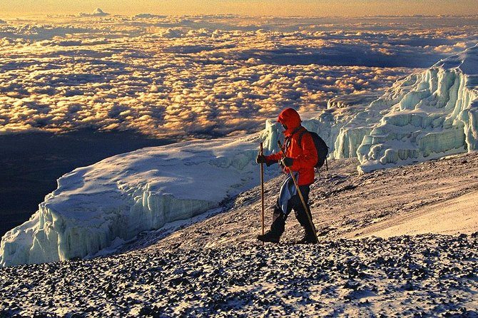 Kilimanjaro Climb 8 Days Lemosho Route